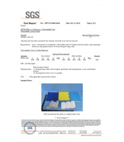 ASTM Report by SGS 02